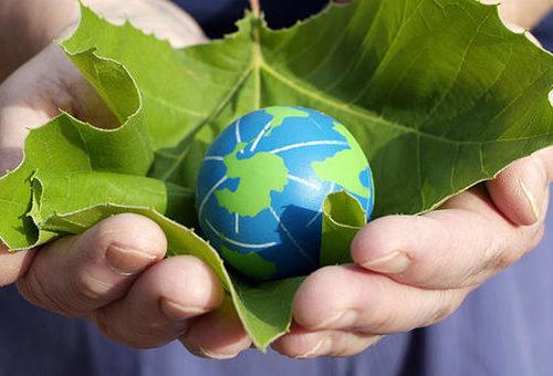 Fundos verdes e a realidade nua e crua