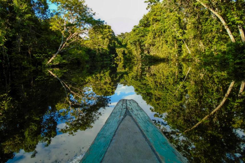 Amazônia é nossa