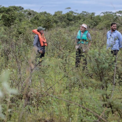 Distribuição de soro antiofídico não é suficiente para atender Rondônia