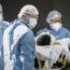 O salto no escuro (uma história da pandemia COVID-19) Capítulo 01