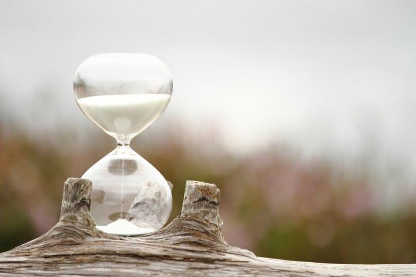 o tempo incerto